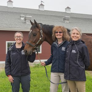 Internal Medicine team at Tufts Equine Center - Gruntman, Mazan and Bedenice